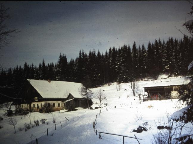 Hütte1